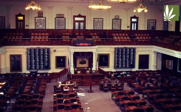 Texas votes decriminalization legislation