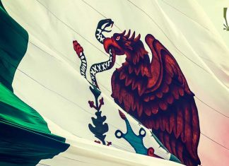 mexico-legalize-marijuana
