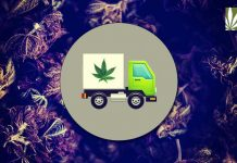 Marijuana Deliveries Would Reduce Impaired Driving