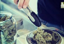 dispensaries reduce local crime study