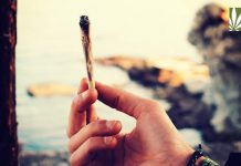 youth marijuana use declining federal report