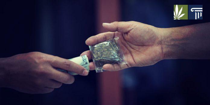 regulation effect black market cannabis