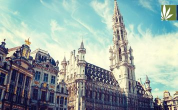 brussels cannabis business