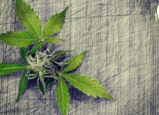 marijuana legalization bill pennsylvania
