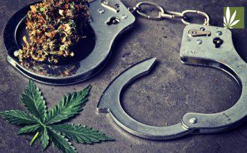 cops cannabis education course
