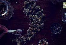 new polls majority support marijuana legalization