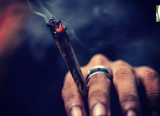 virginia marijuana decriminalization bills