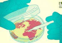 world health organization reschedule cannabis