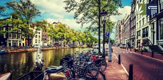 amsterdam mayor considering banning weed tourists