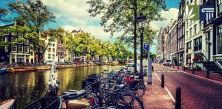 amsterdam mayor considering banning weed tourists