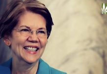 elizabeth warren federal marijauna reform