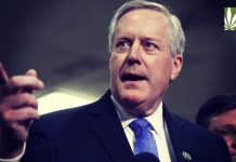 rep mark meadows chief of staff trump