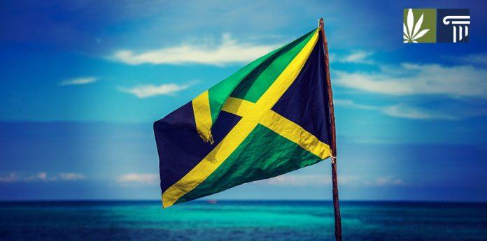 jamaica medical marijuana herb houses covid 19
