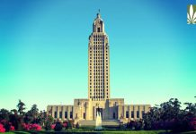 louisiana cannabis reform bills