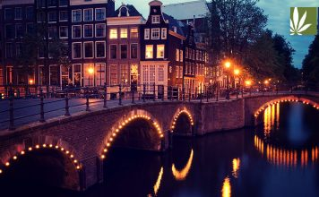 amsterdam tries ban tourists buying weed