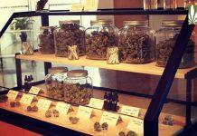 cannabis legalization social equity goals