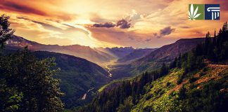montana marijuana legalization signatures submitted