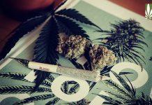 ne jersey gov phil murphy cannabis legalization covid 19 recovery