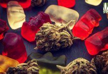 Medical Marijuana Legalized Hawaii