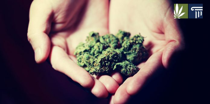 Support marijuana leglaization reaches new heights
