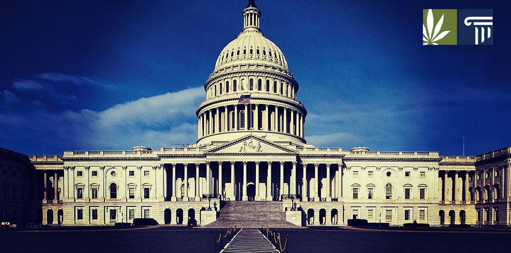 Cannabis Reform Democratic Senate